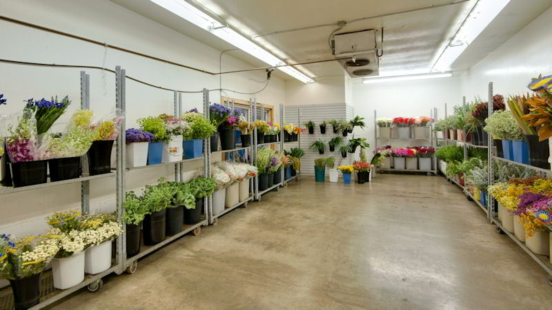 products gallery anchorage flower wholesale