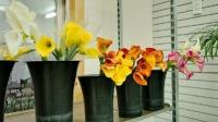Anchorage/Alaska Flower Wholesale - Cedars Wholesale Floral Imports