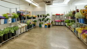 Anchorage Flower Wholesale